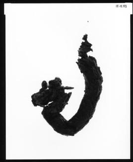 human calligraphy